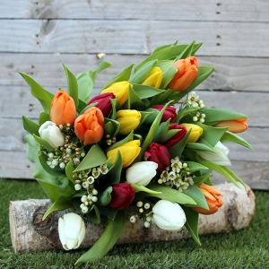 Un bouquet de tulipes multicolores